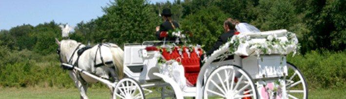 Hochzeitskutsche