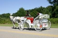Hochzeitskutsche - Hochzeitsservice